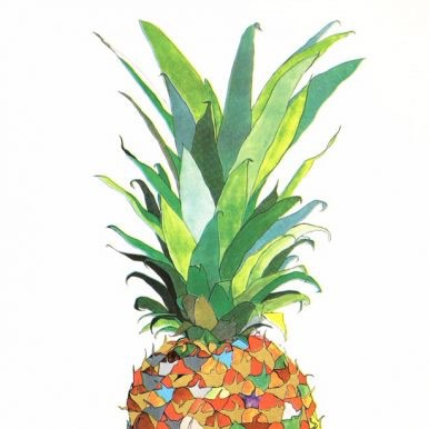 Multicoloured Pineapple By Andrew MacGregor