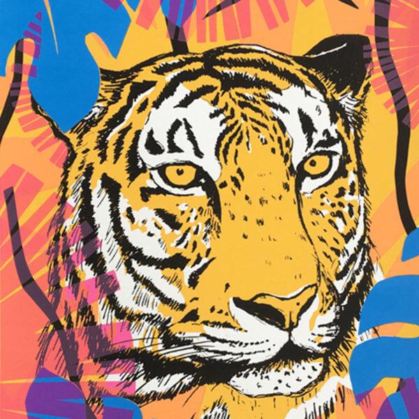 Caitlin Tiger crop 600x600 - Tiger by Caitlin Parks