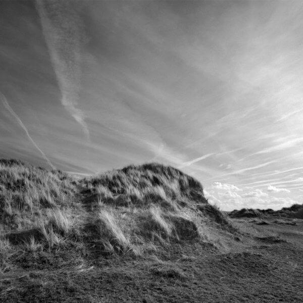 David Whyte Blackeney point 600x600 - Blackeney Point by David Whyte