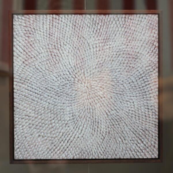 Donna seedhead 600x600 - Seedhead by Donna Leighton