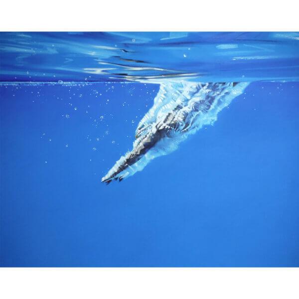 Priscilla brockdive full 600x600 - Brockwell Lido Dive by Priscilla Watkins