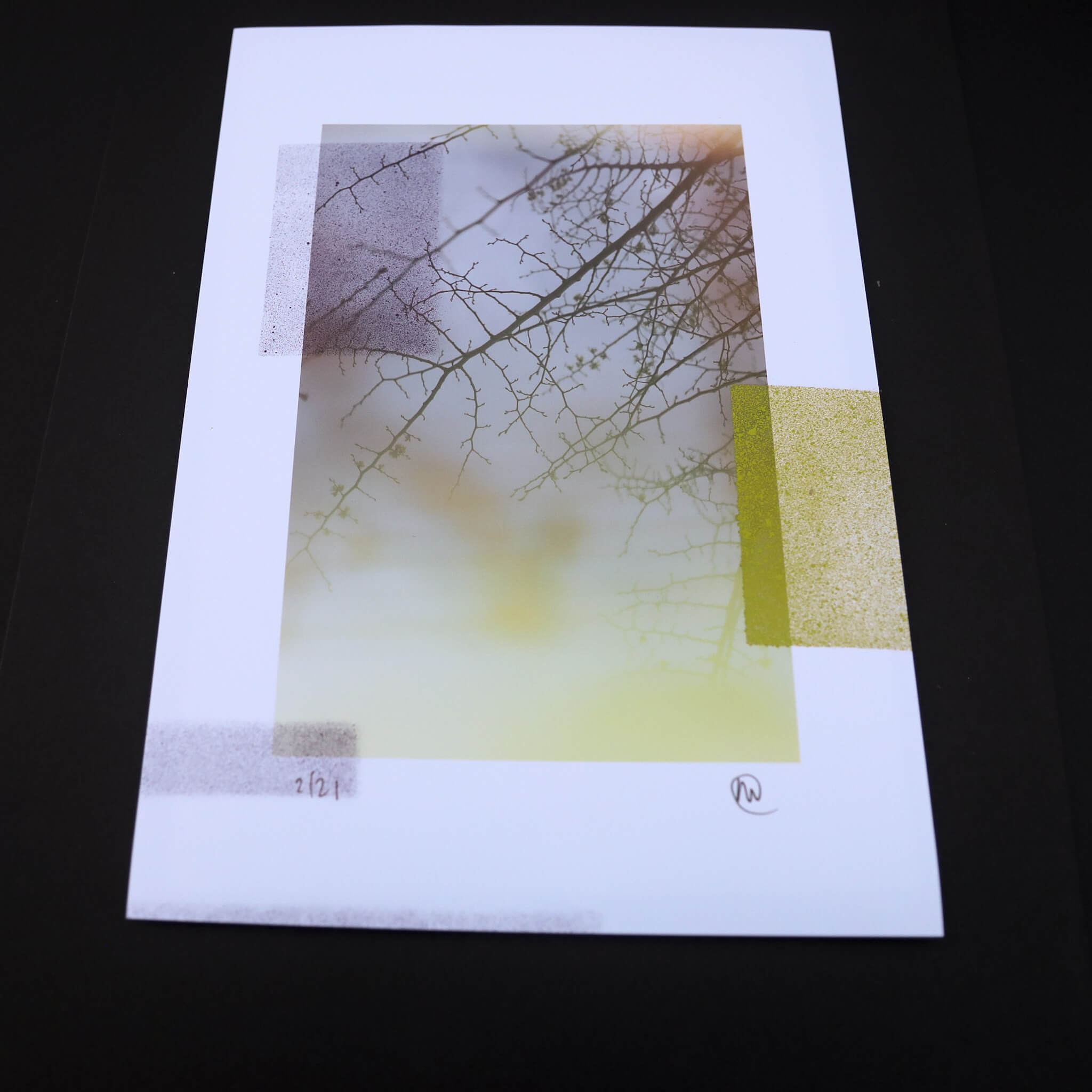 N58A0489 - Camberwell Untitled by Adrian Flower