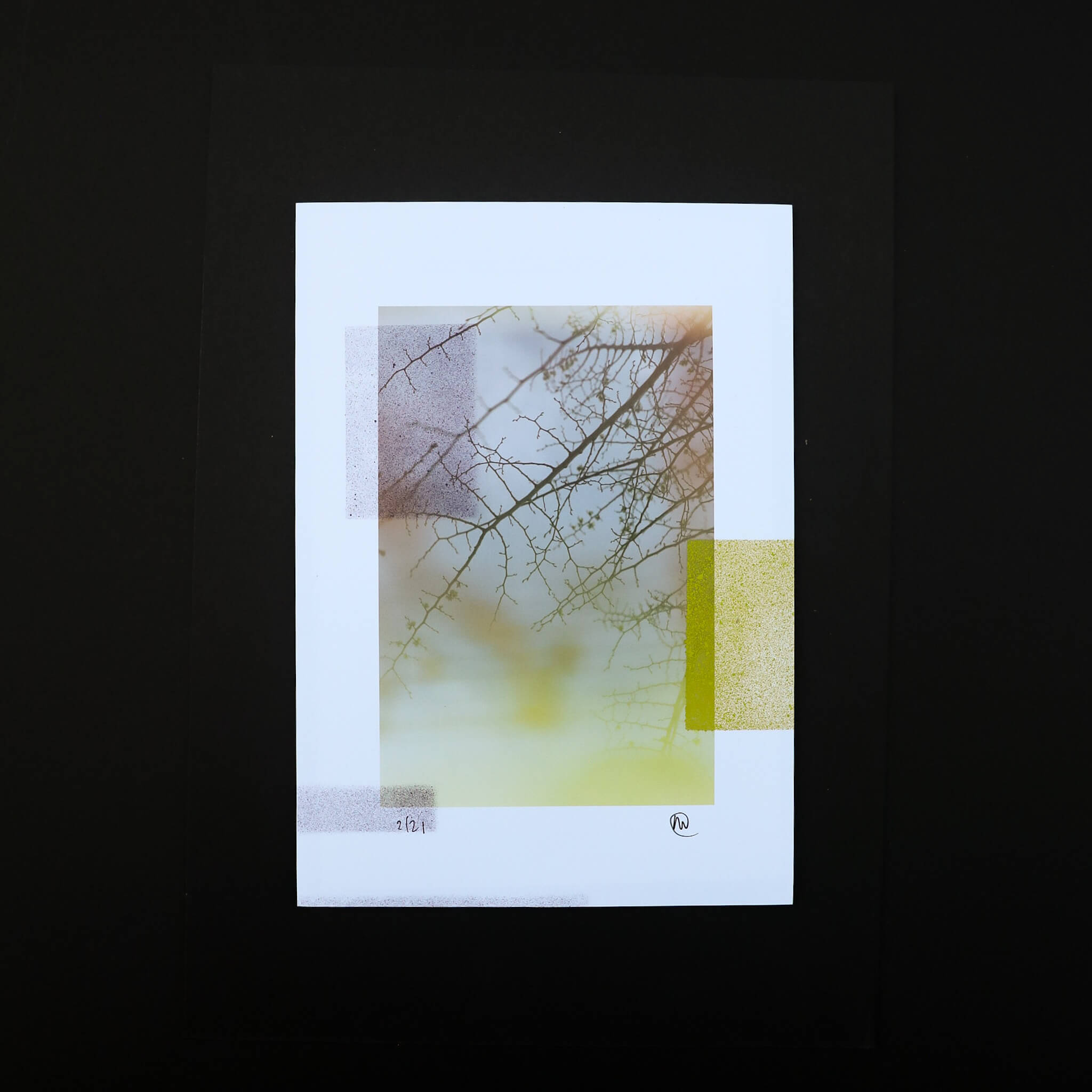 N58A0490 - Camberwell Untitled by Adrian Flower