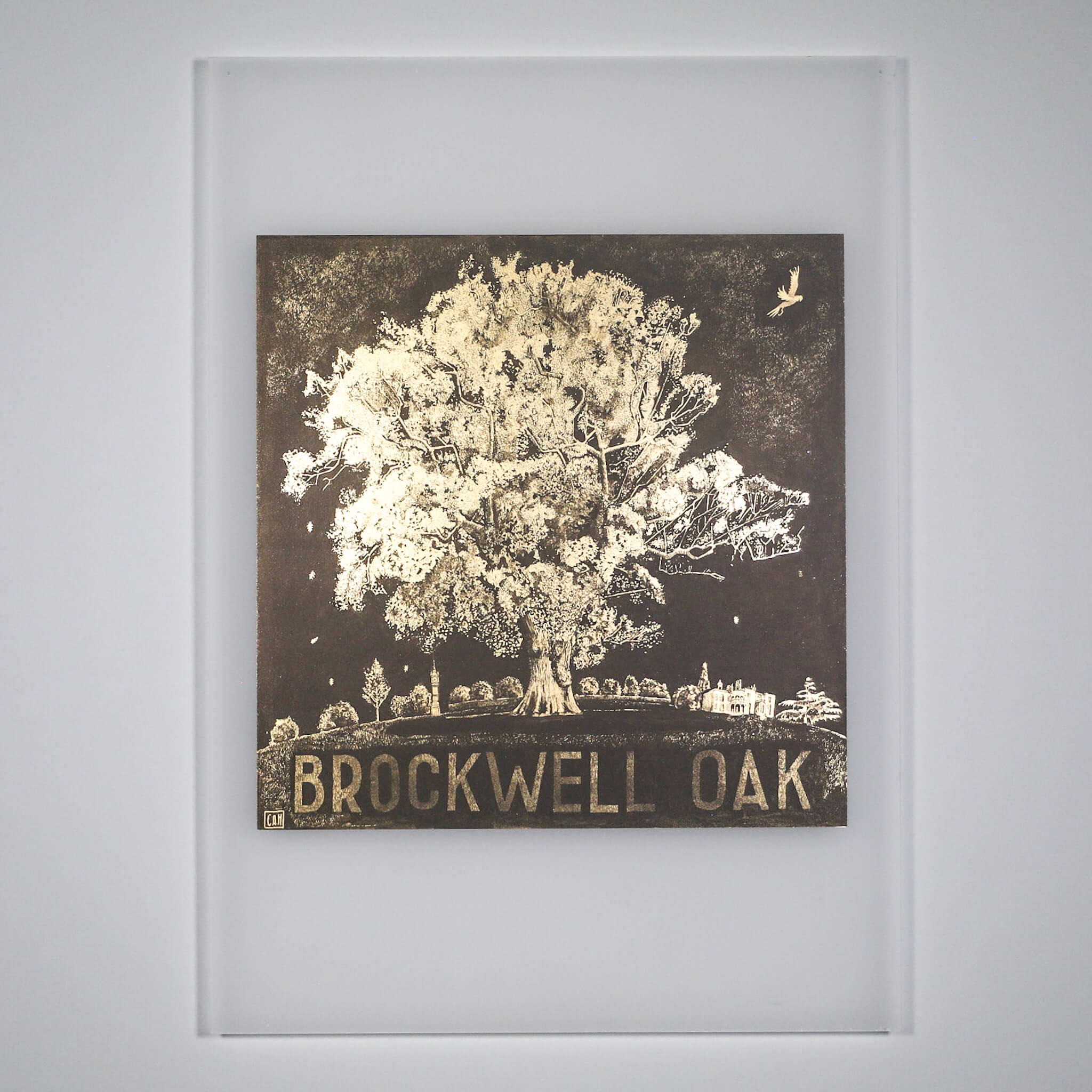 IMG 0345 - Brockwell Oak by Caroline Harper