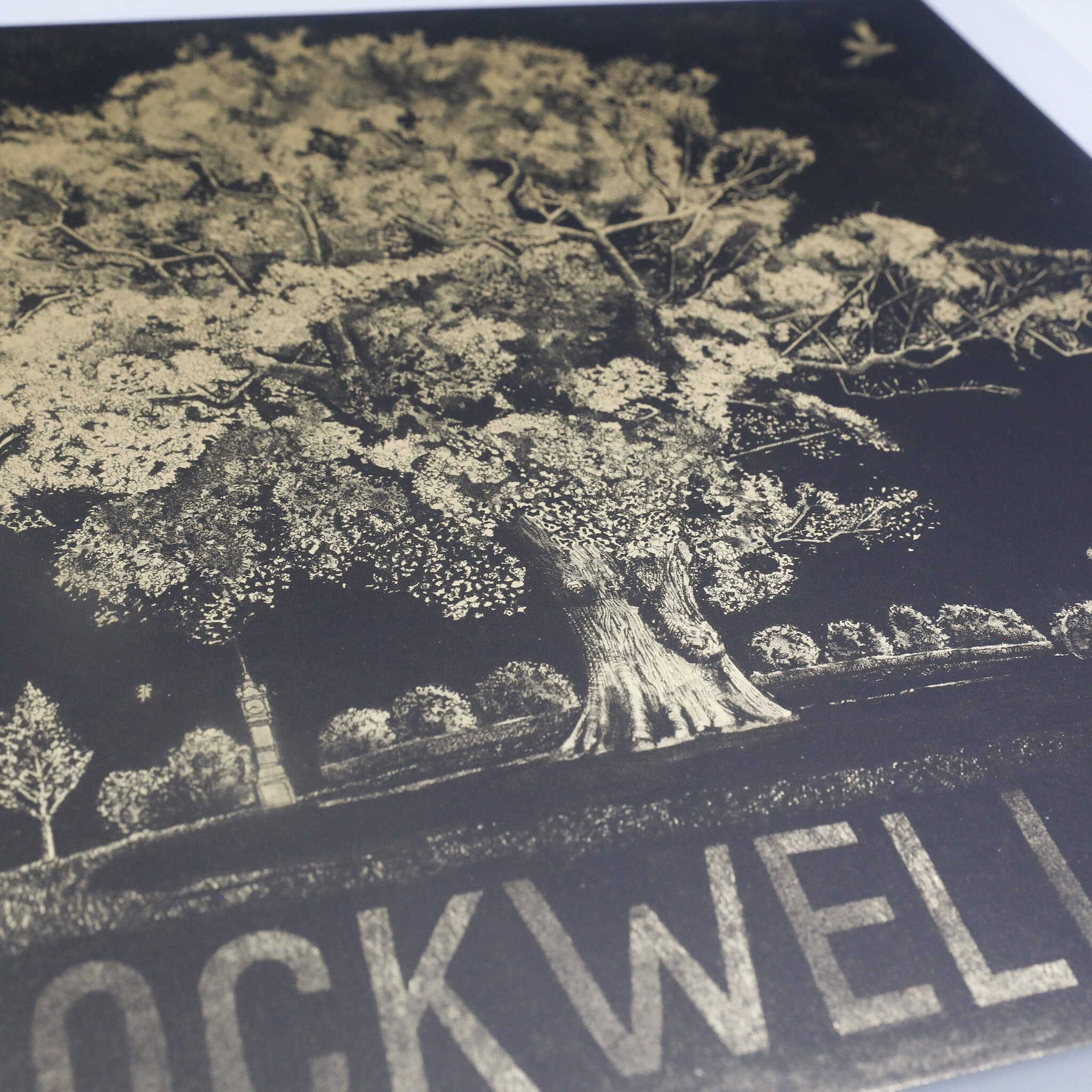 IMG 0384 - Brockwell Oak by Caroline Harper